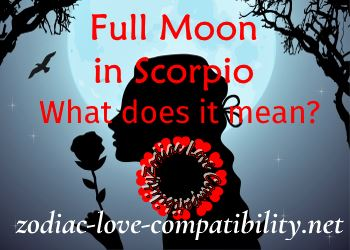 All About the Scorpio Starsign - Zodiac Love Compatibility